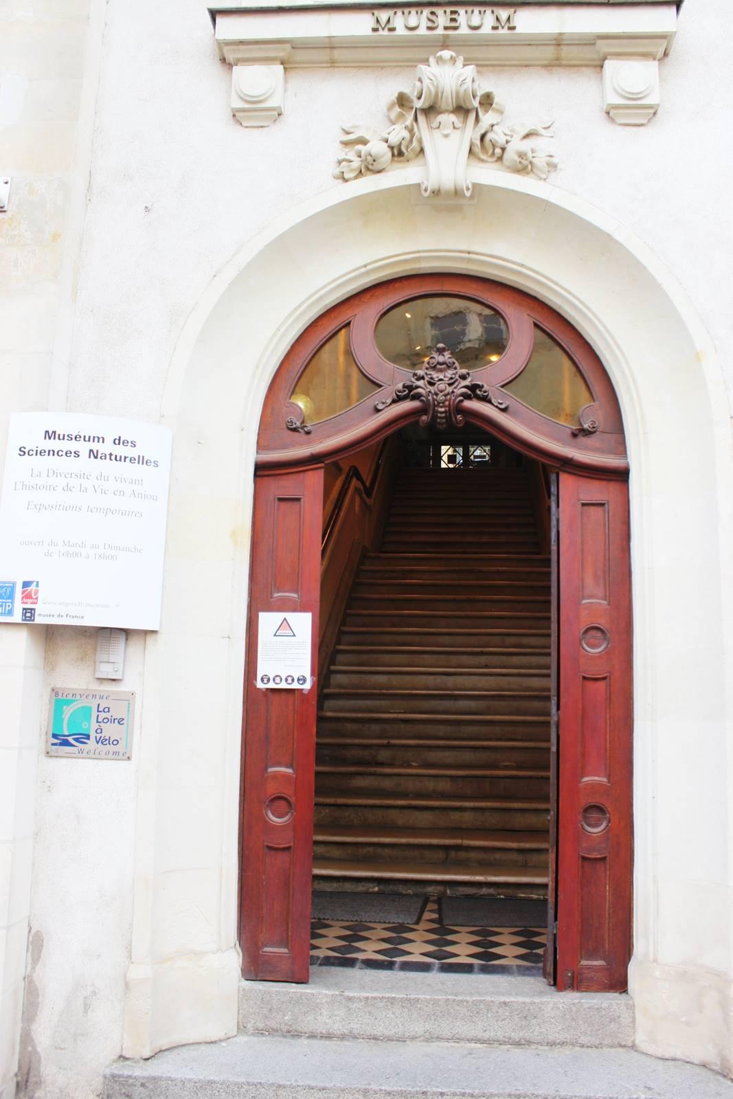 Angers avis visite maine et loireimg 9257