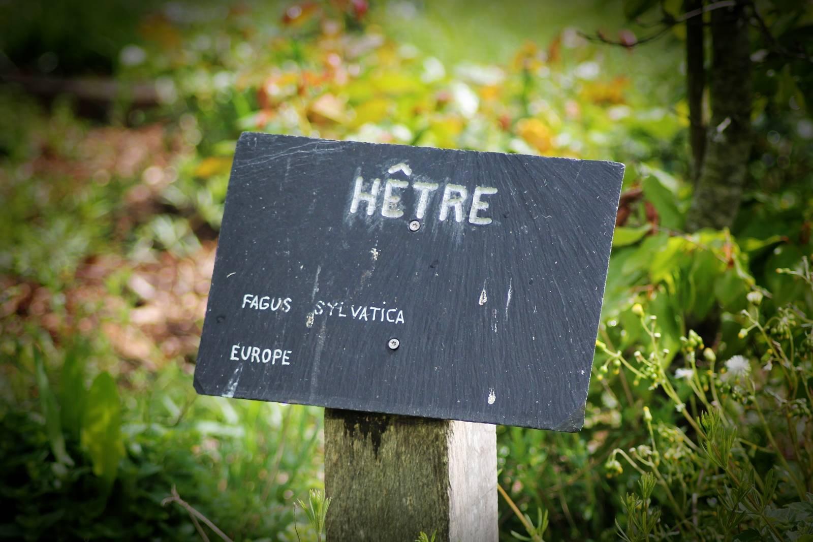 Arboretum sophie trebuchet 5