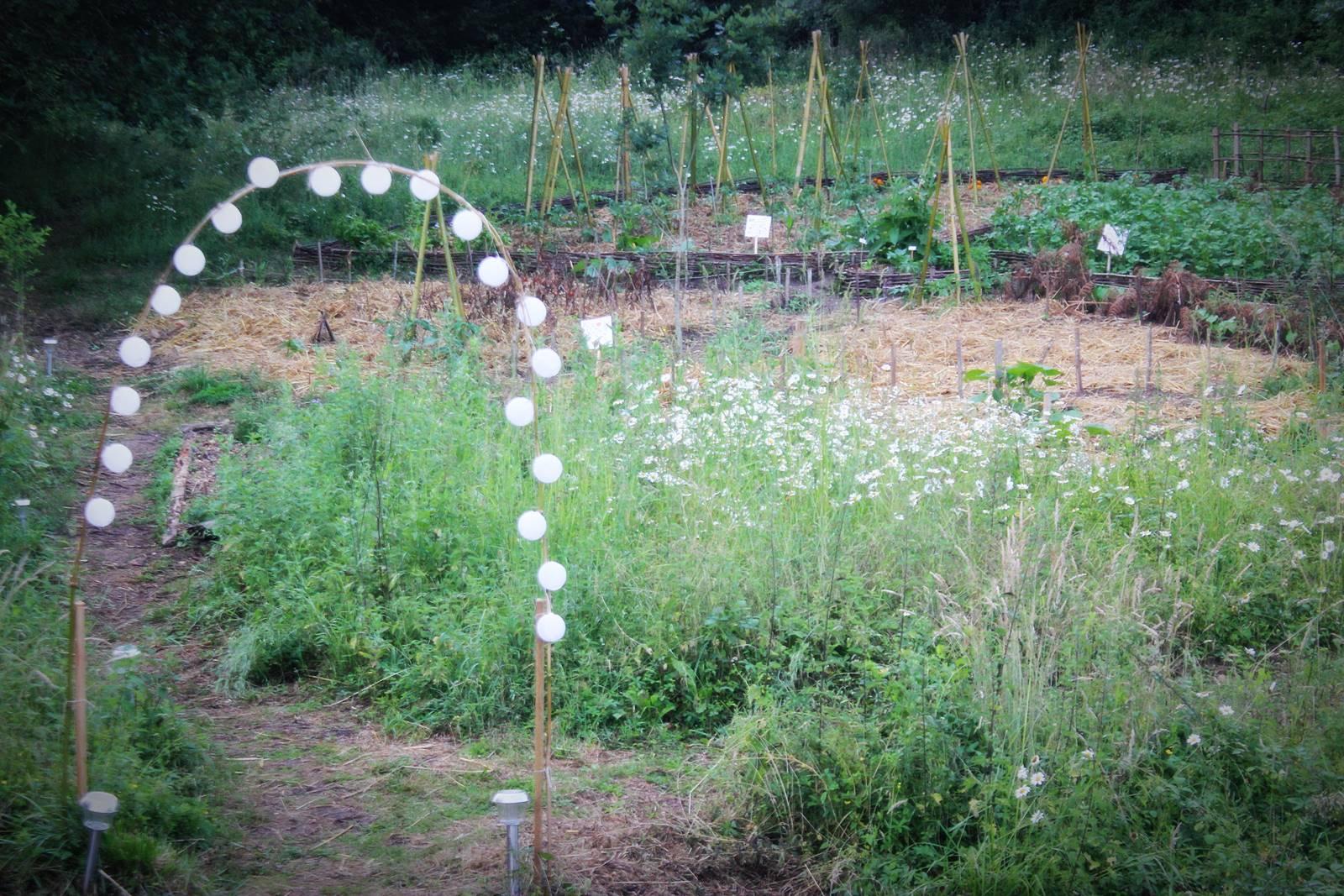 Blog la cueilleuse nort sur erdre loire atlantique 8