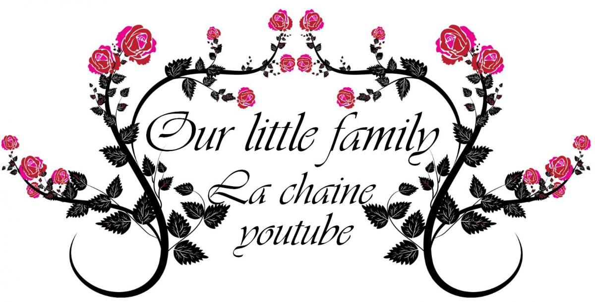Blog logo youtube our little family