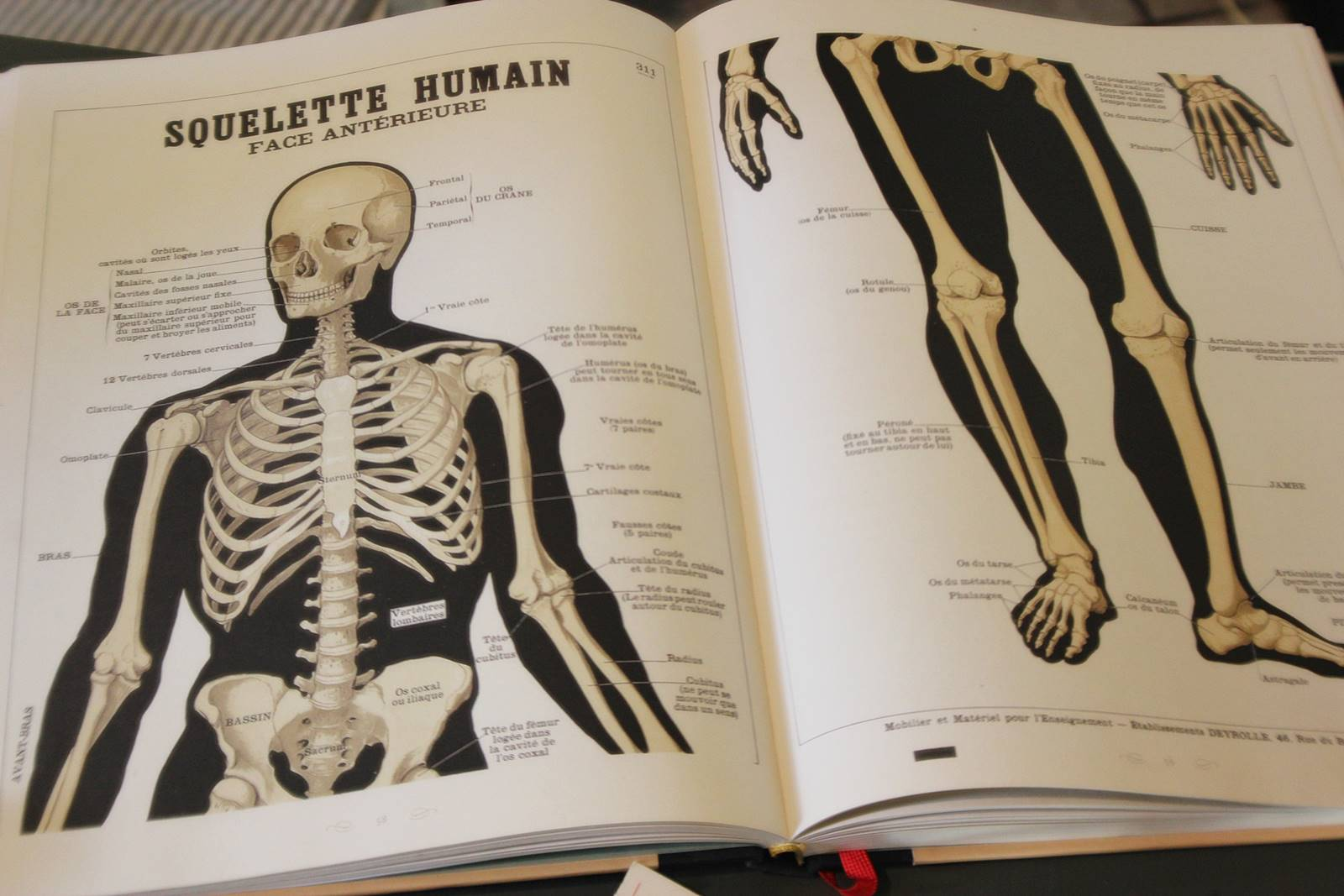 Blog squelette 4