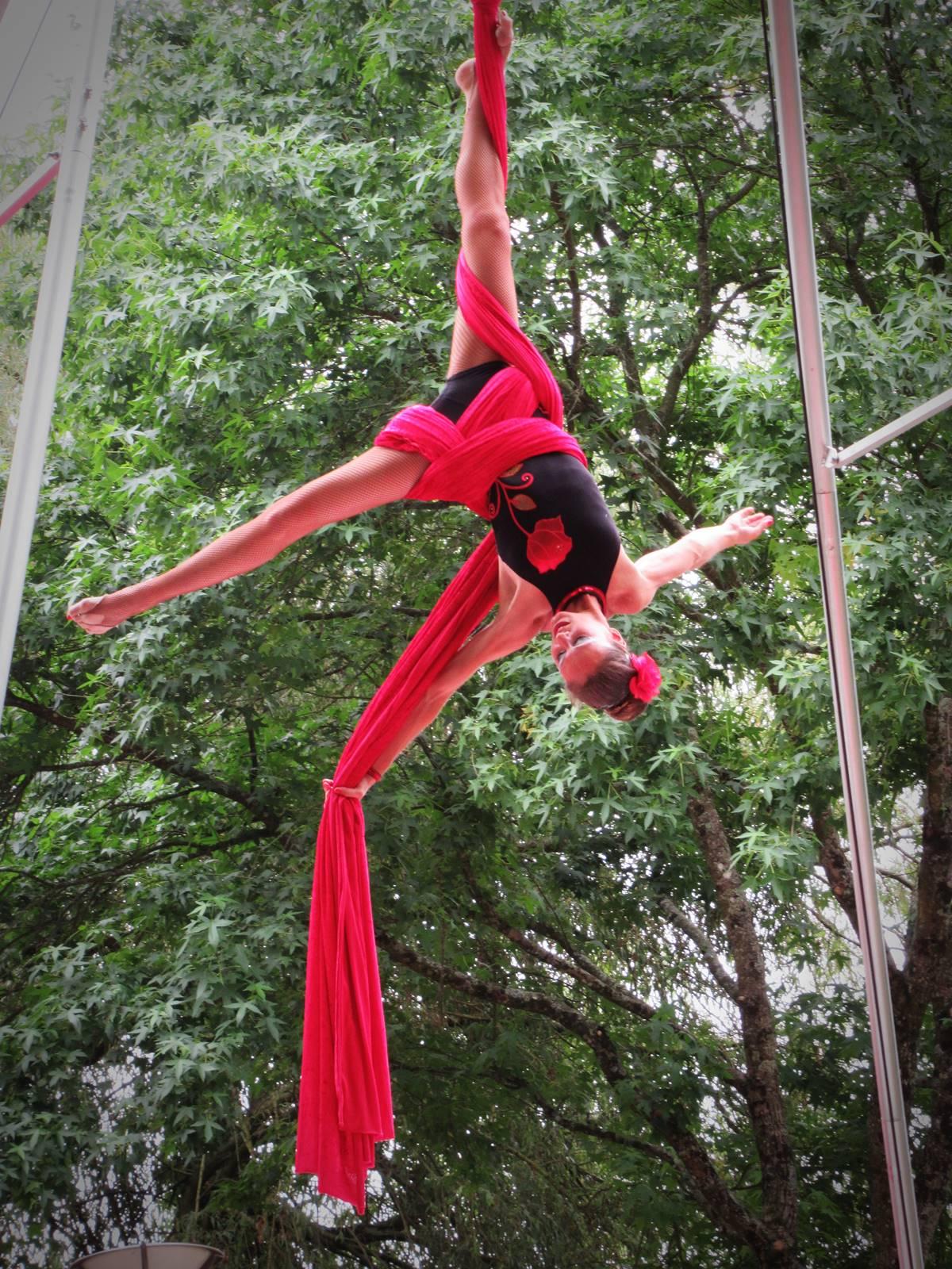Cabaret circus 15