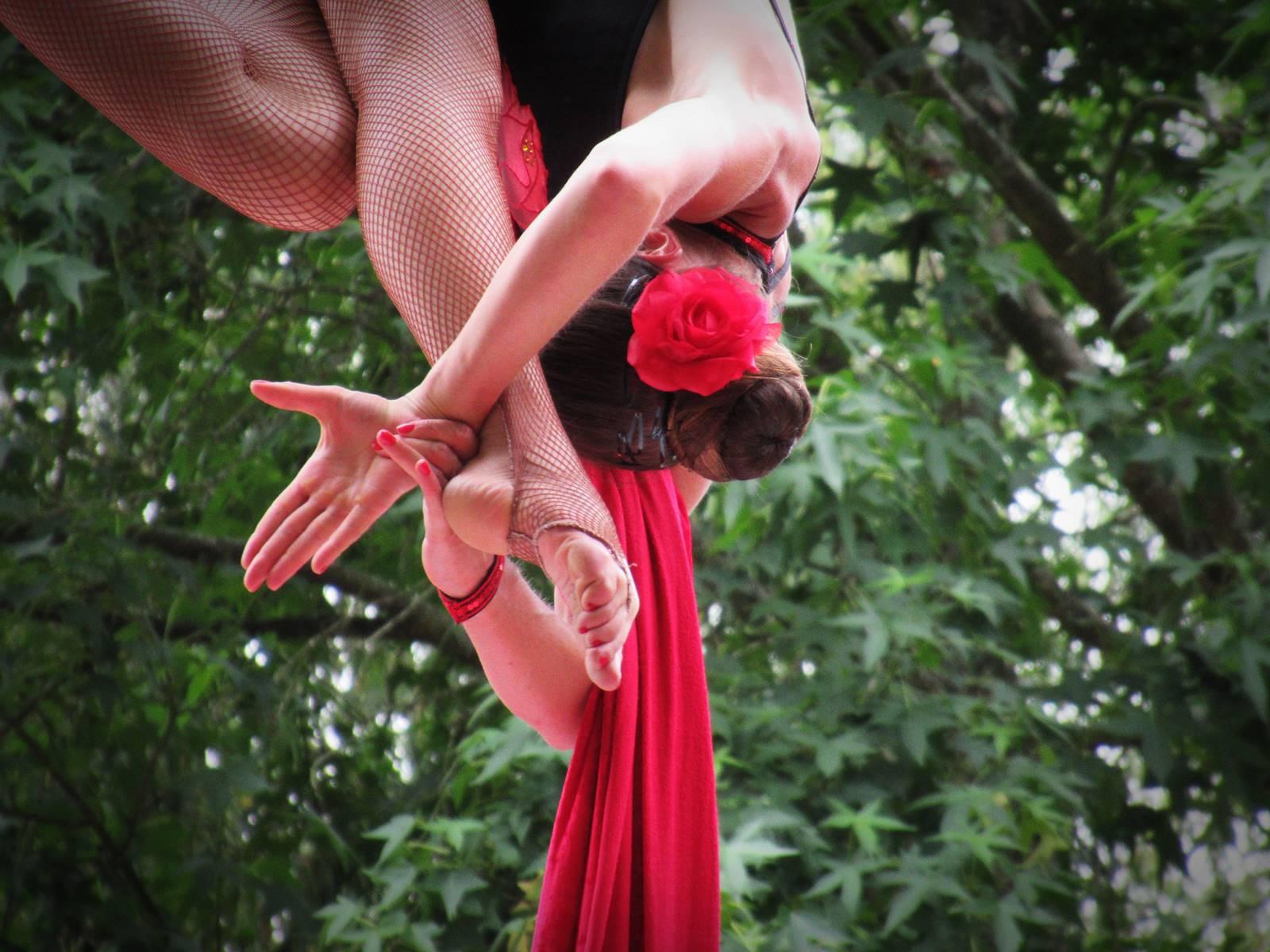 Cabaret circus 20