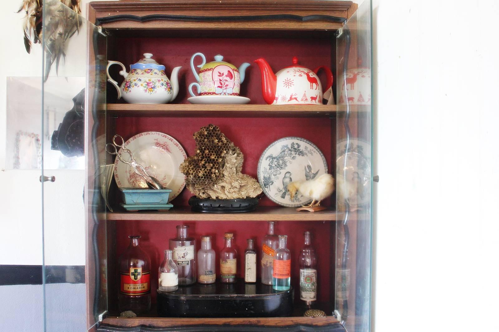 Cabinet des curiosites 19