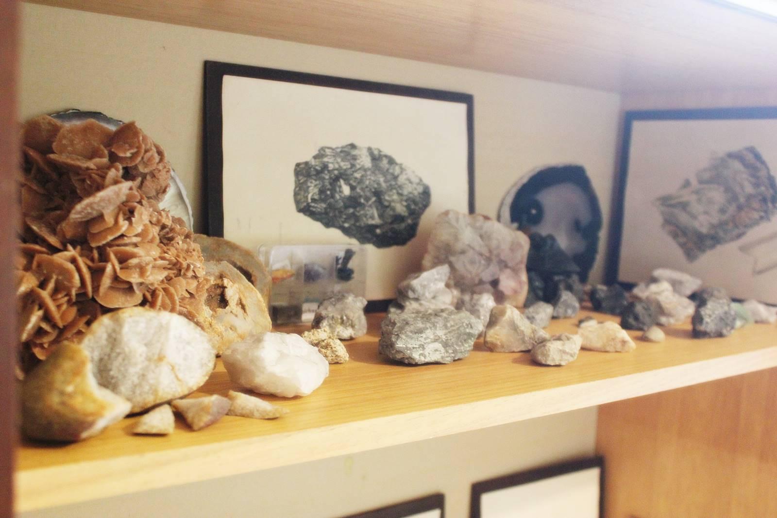 Cabinet des curiosites 28