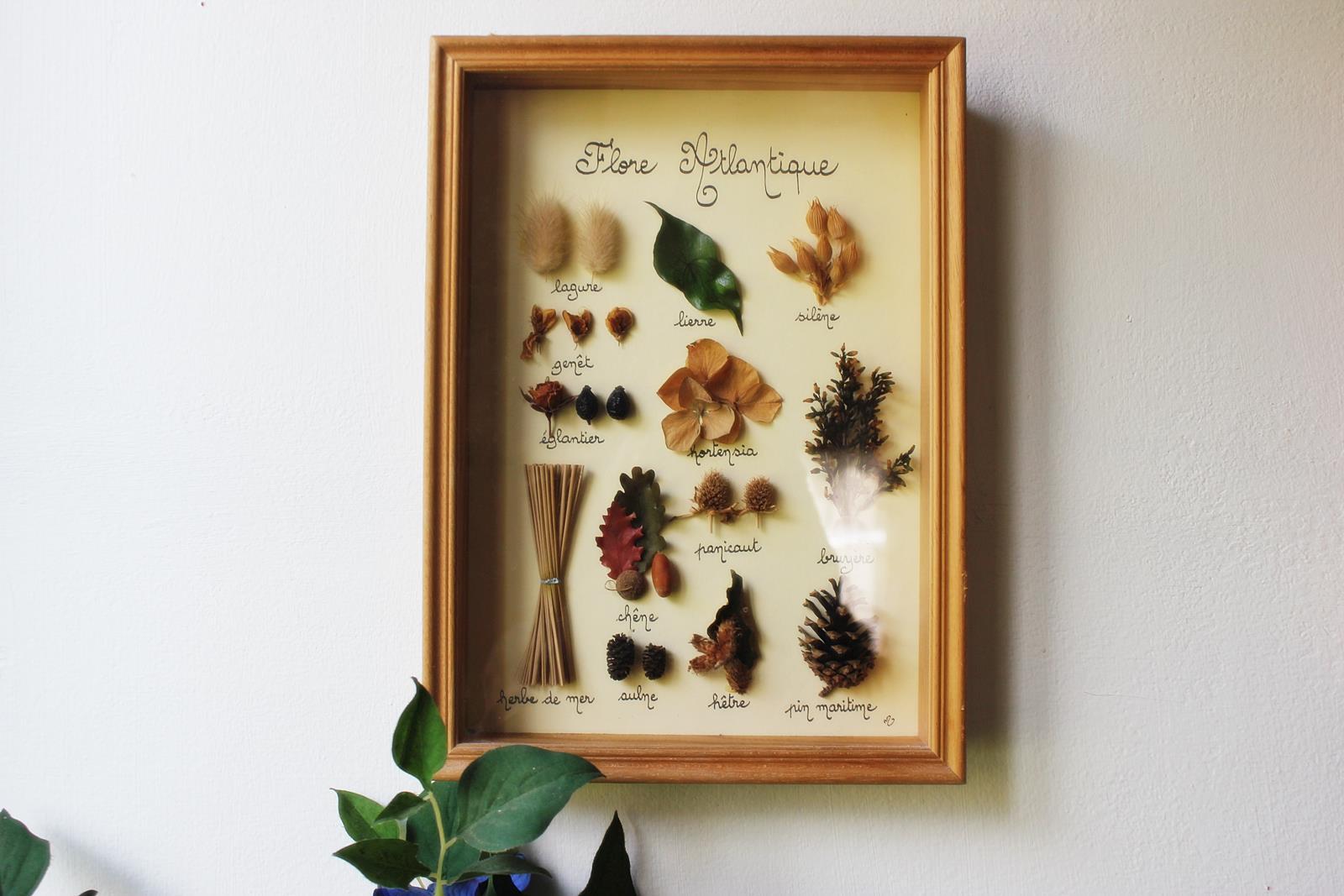 Cabinet des curiosites 30