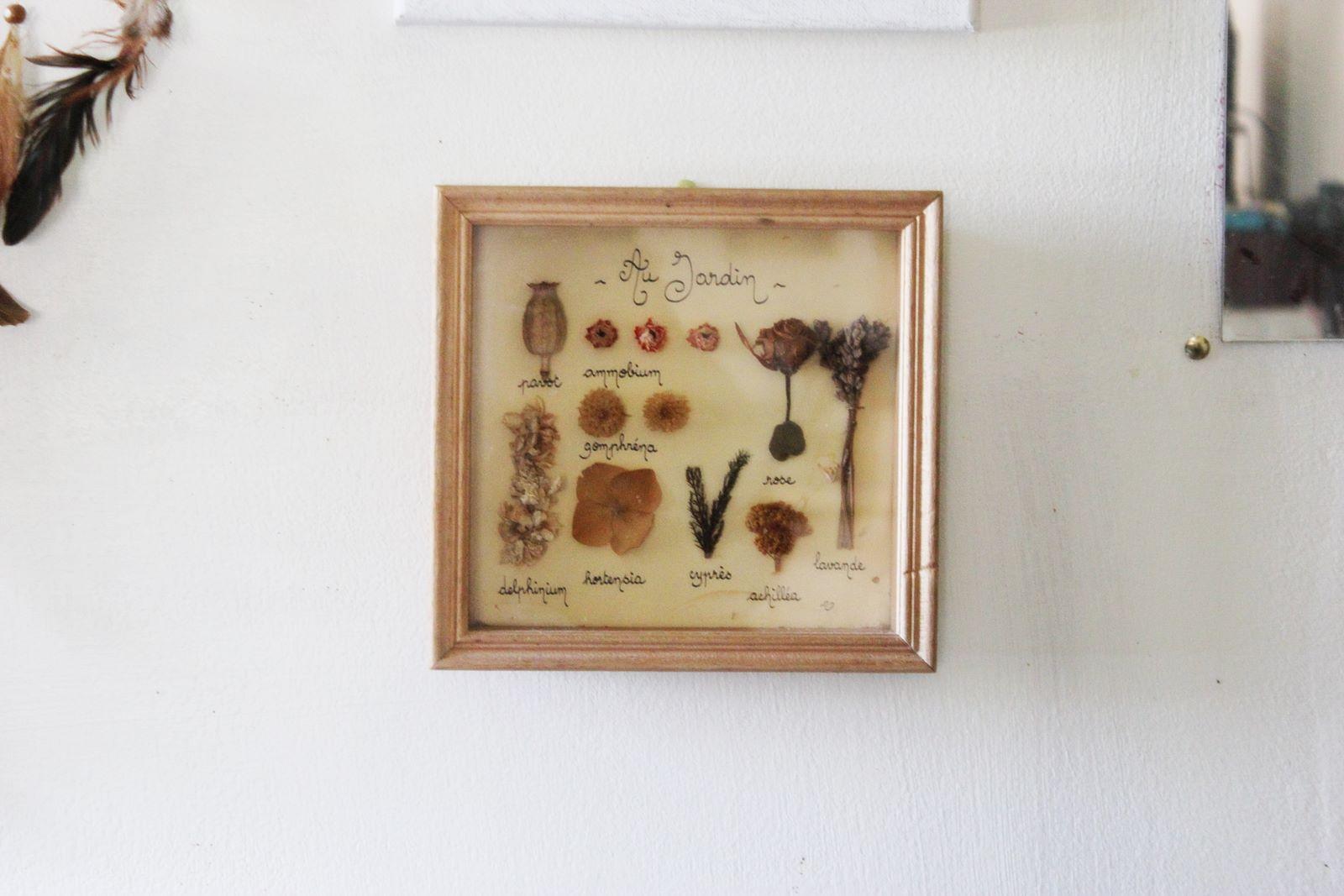 Cabinet des curiosites 31