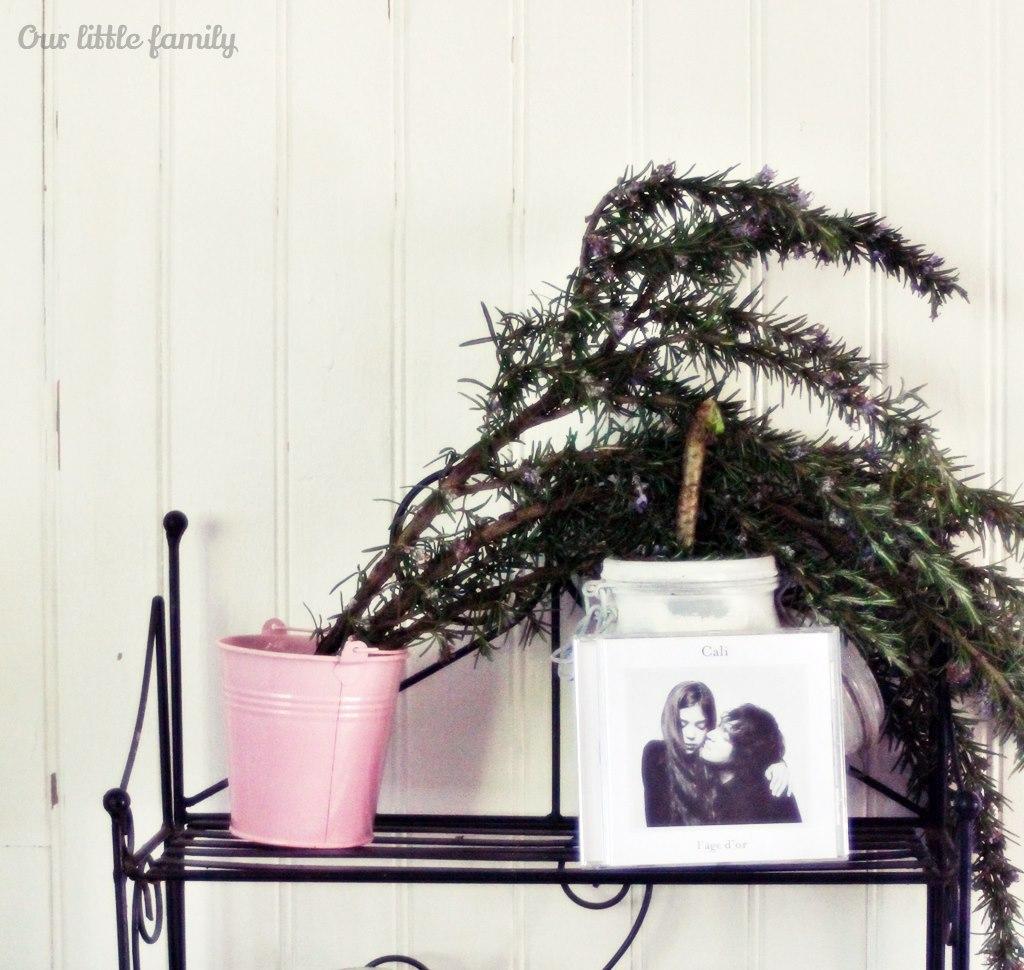le jour o j 39 ai d couvert l 39 album l 39 ge d 39 or de cali. Black Bedroom Furniture Sets. Home Design Ideas