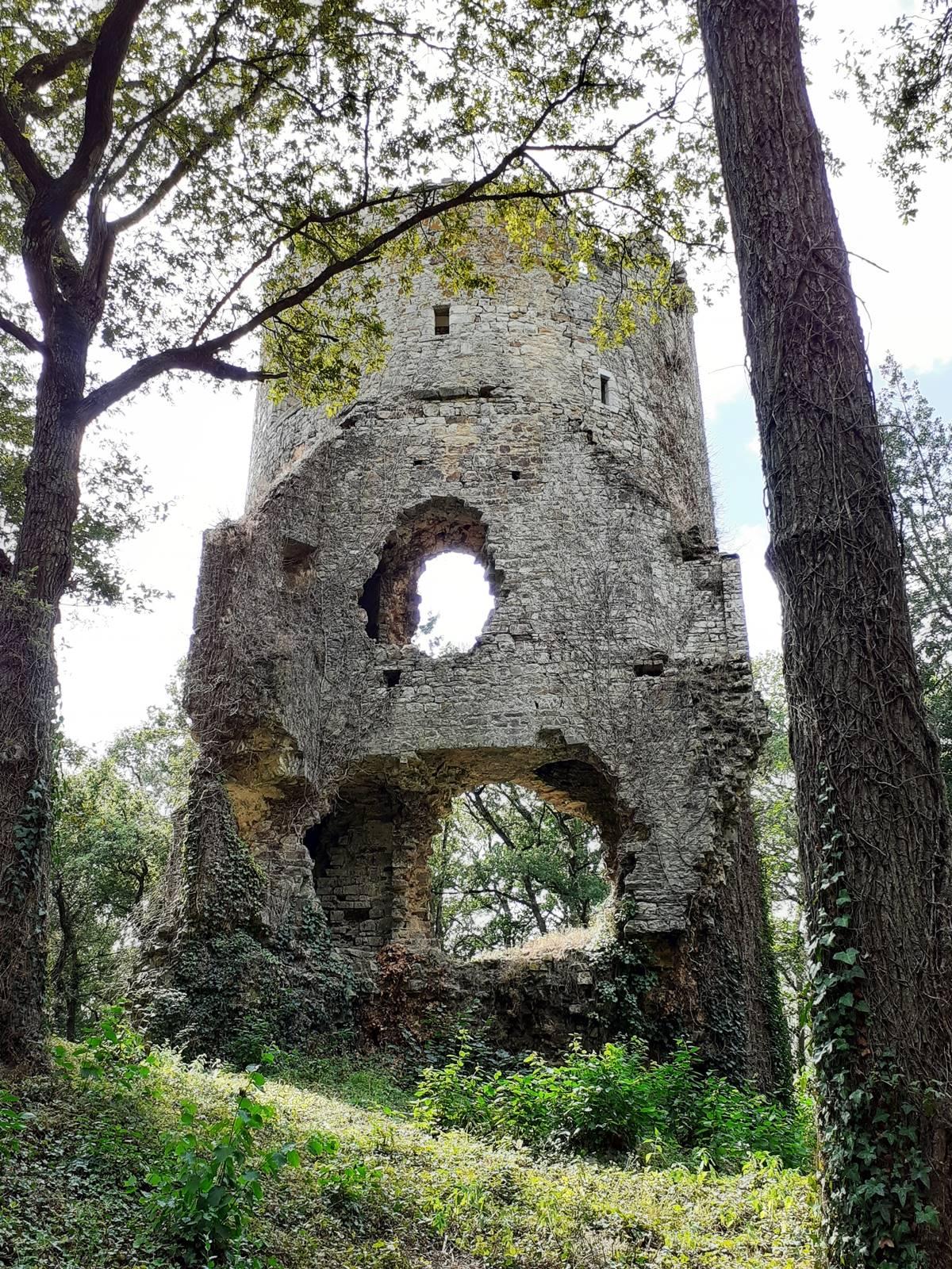 Chateau saint clair blog