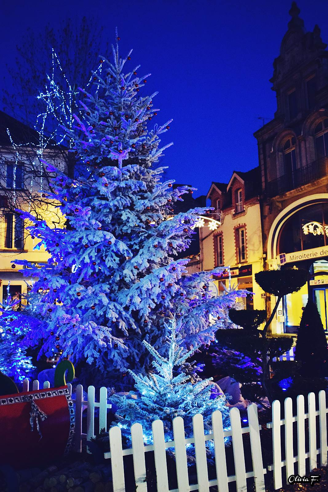 Chateaubriant noel 2016 voyage 2
