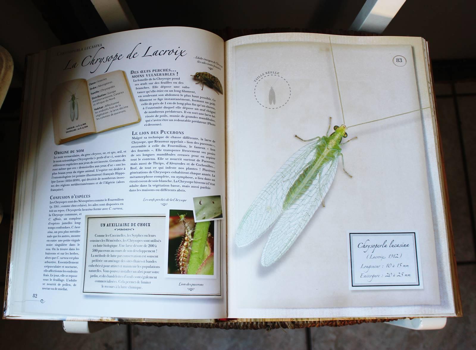 Collection d insectes livre larousse 2