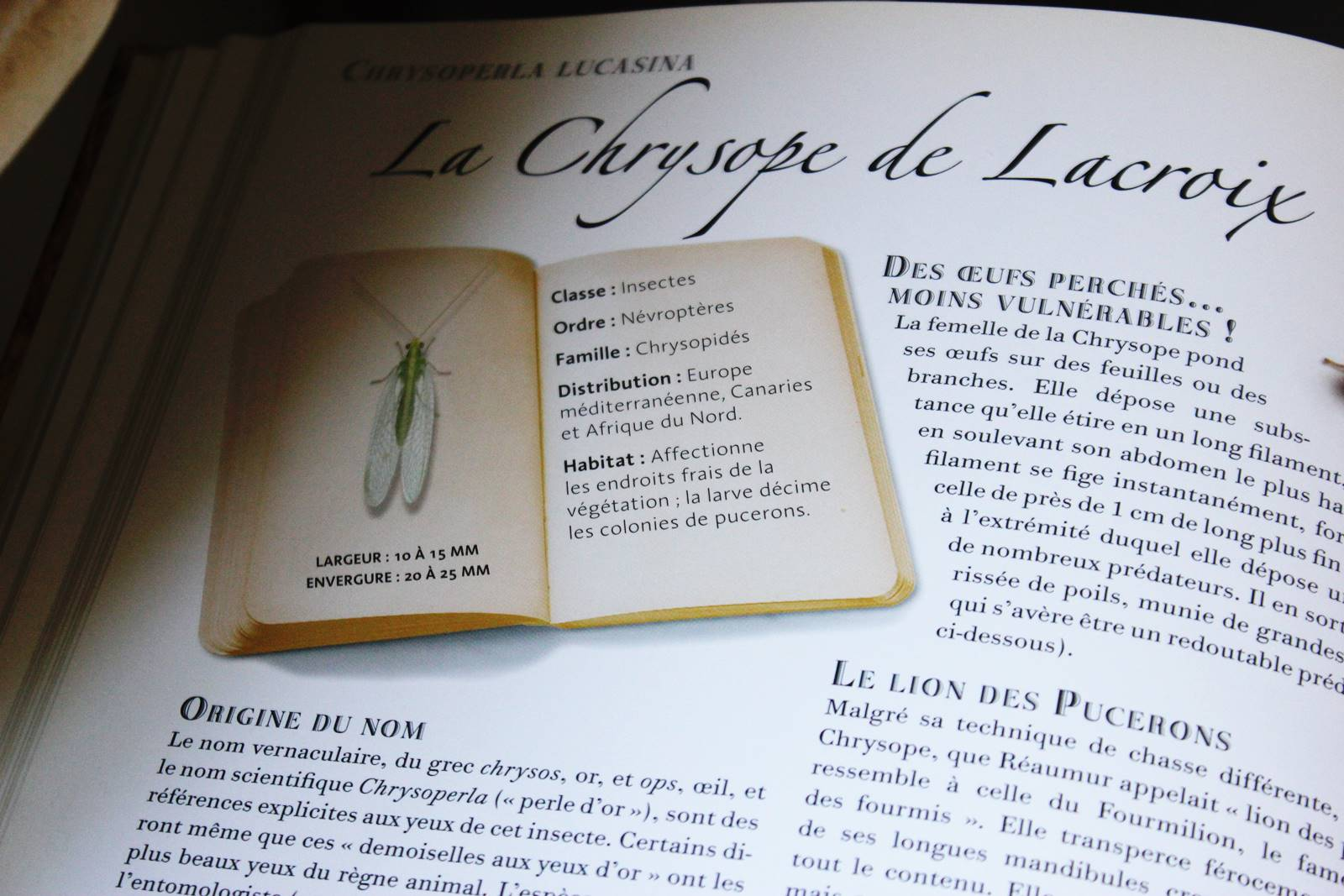 Collection d insectes livre larousse 4