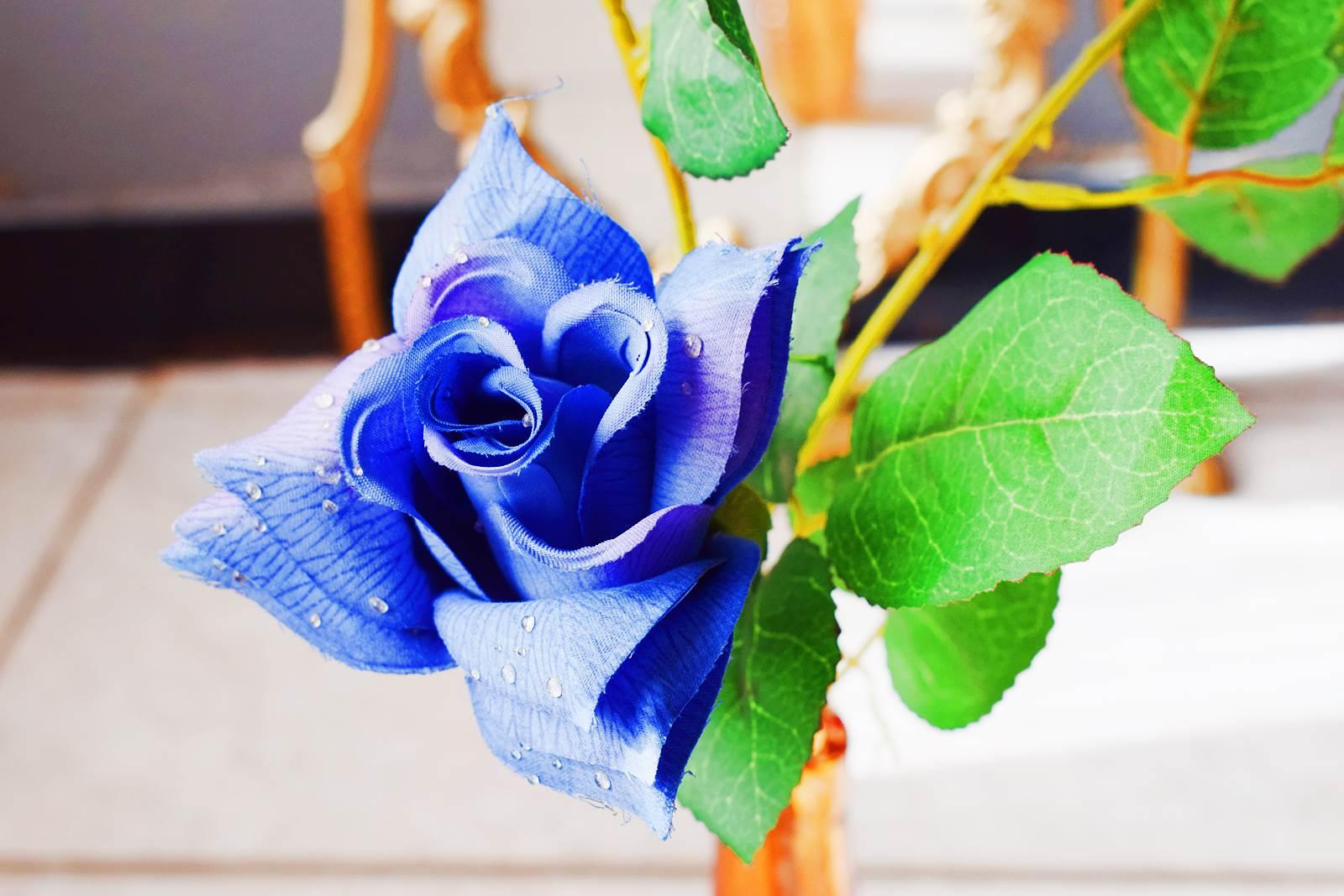 Instant vintage 40 rose bleu