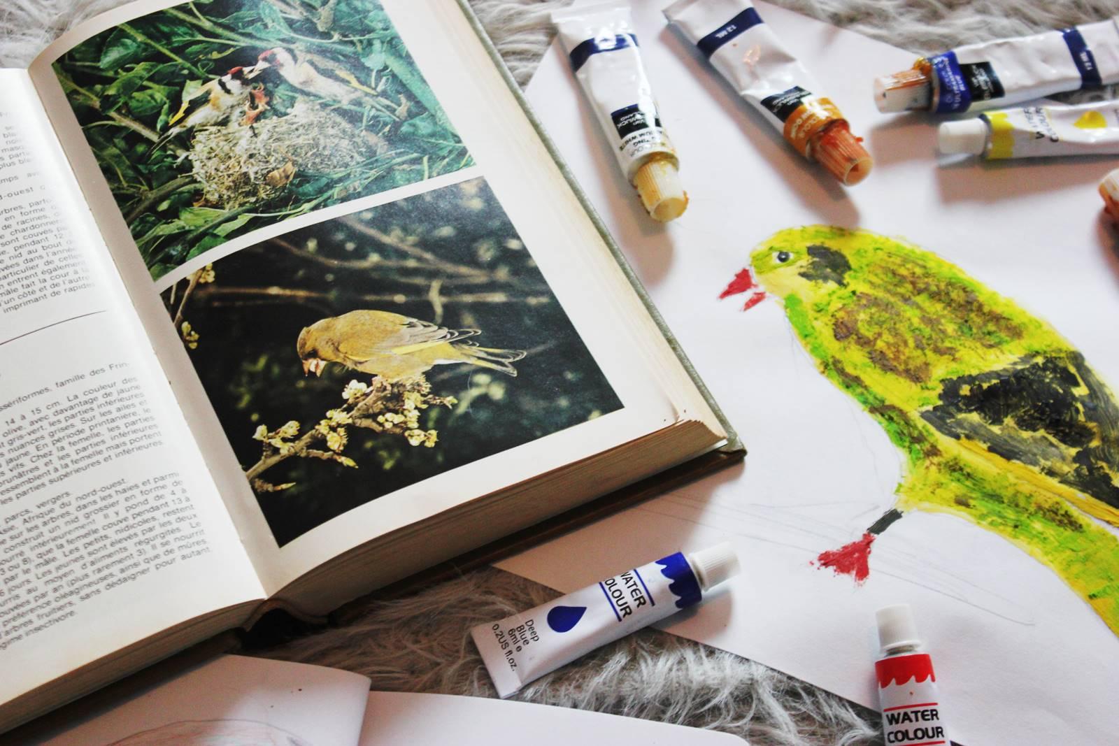 L inventaire des oiseaux verdier d europe