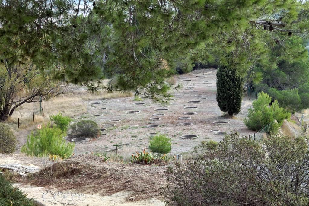 L oppidum d enserune 13