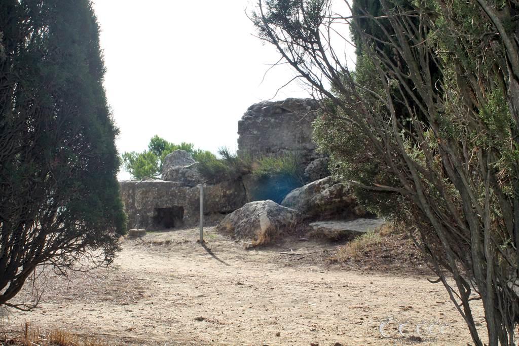 L oppidum d enserune 2