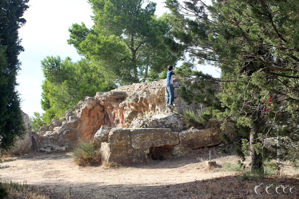 L oppidum d enserune 5