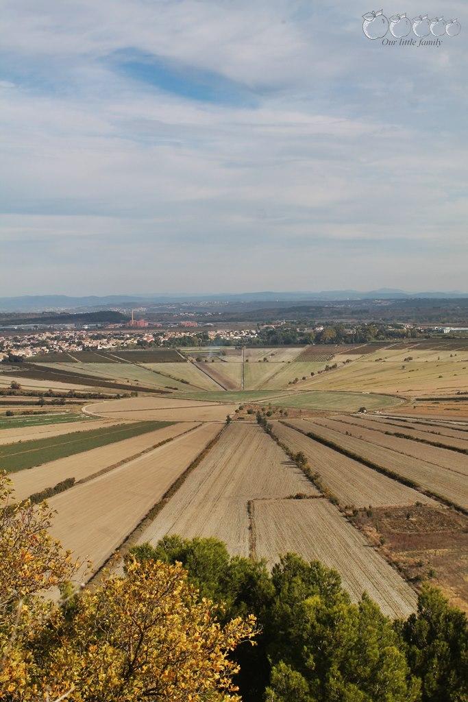 L oppidum d enserune 6