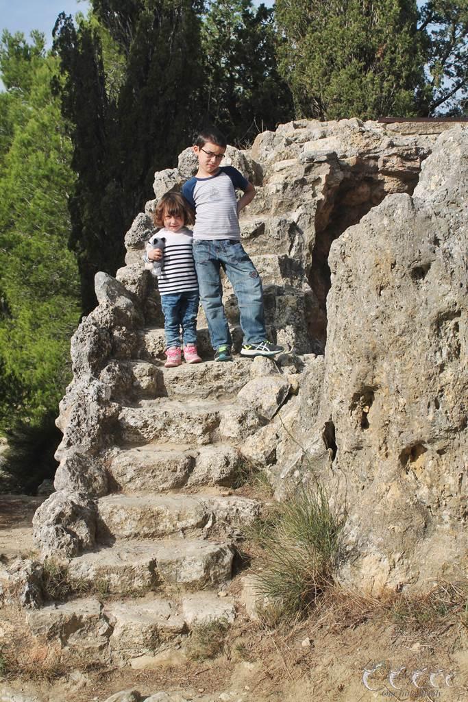L oppidum d enserune 7