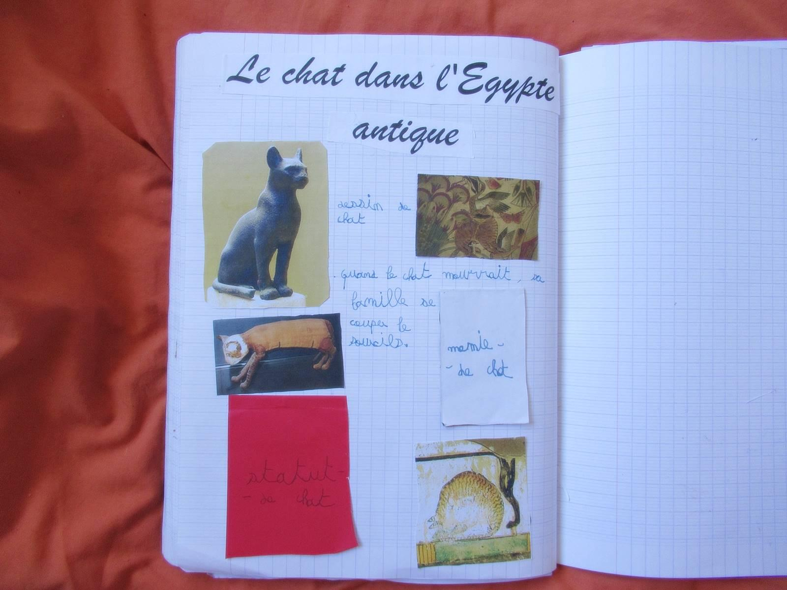 Lapbook chat 2