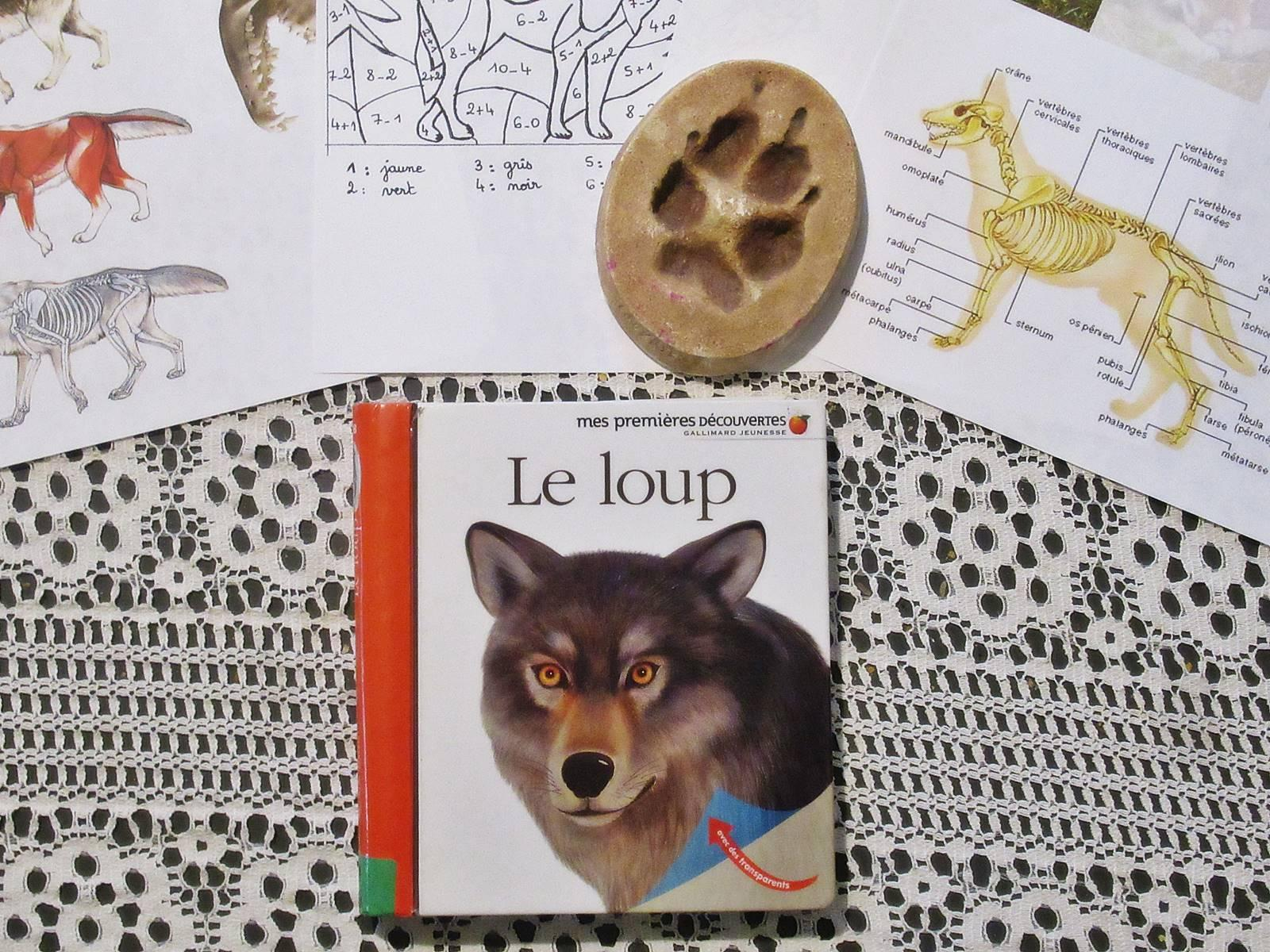 Lapbook loup blog 4