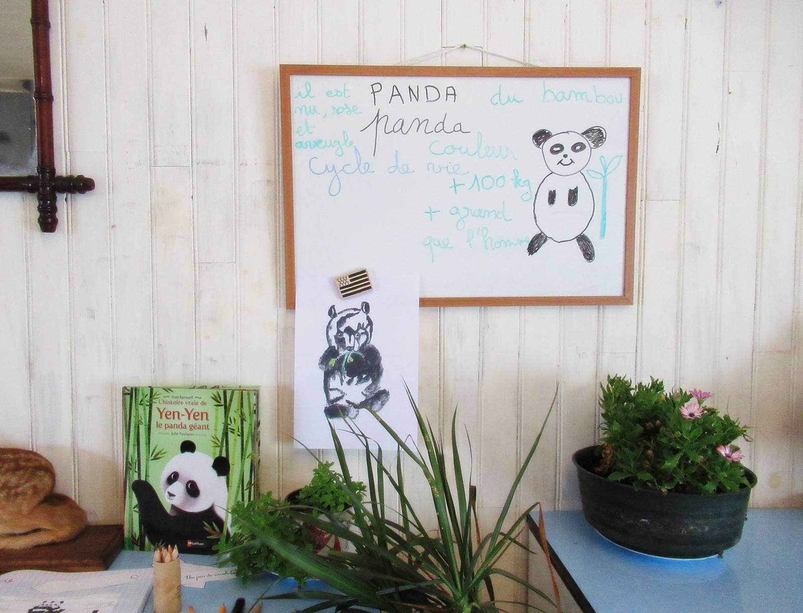 Lapbook panda ief 4