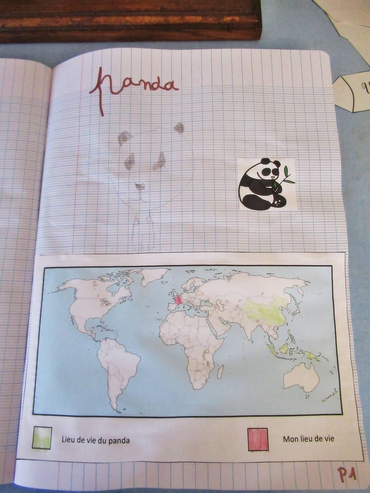 Lapbook panda ief 8