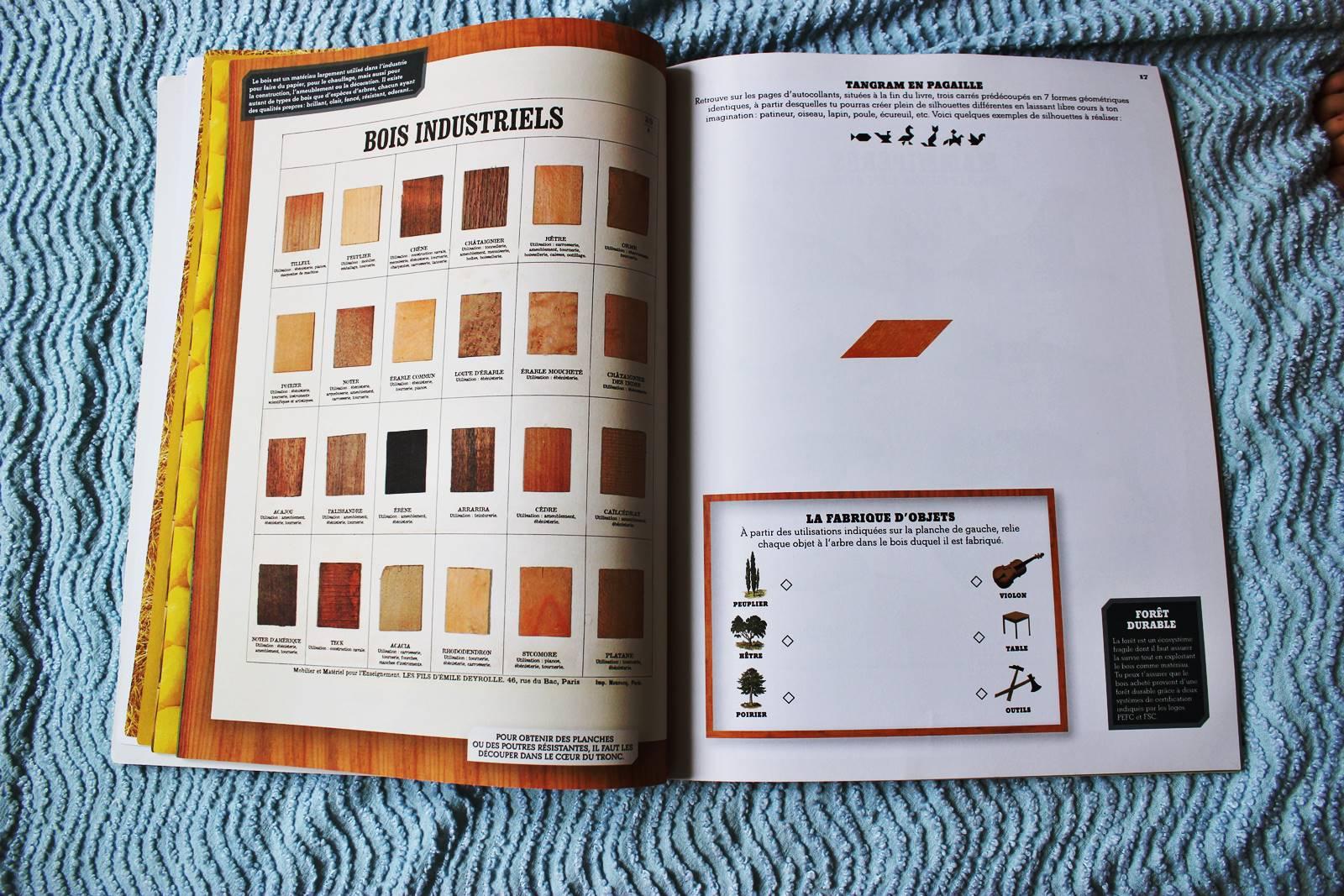 Le grand livre d activites deyrolles 2 ief ecole maison 5