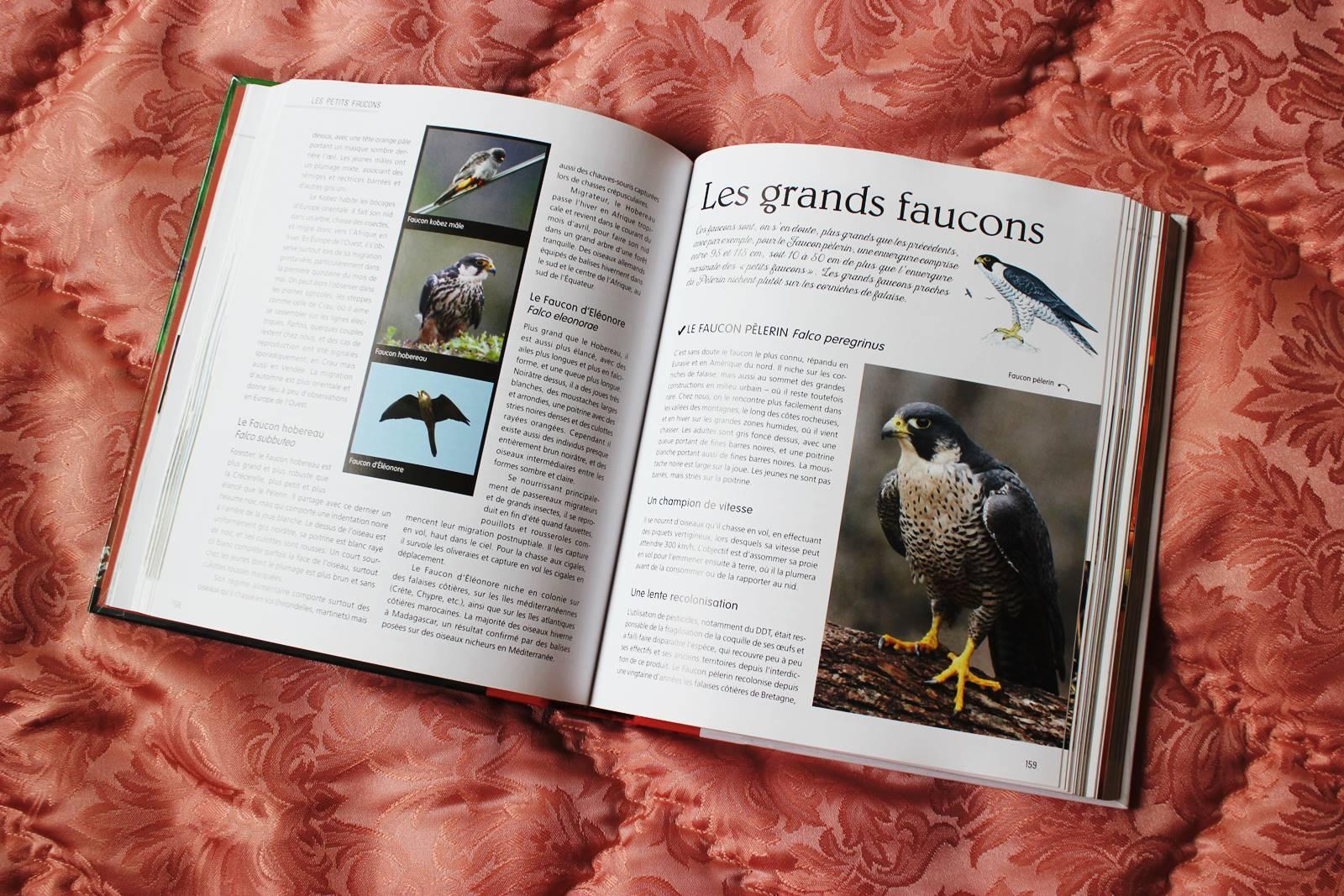 Le petit larousse des oiseaux de france et d europe 2