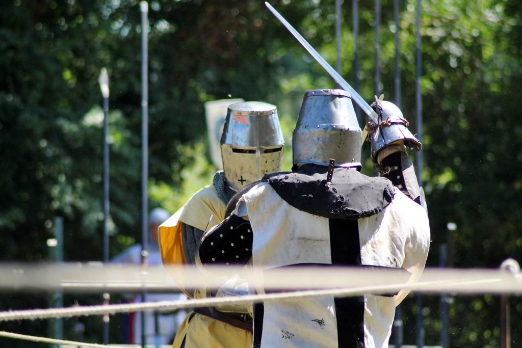 Medievales de commequiers 2016 50