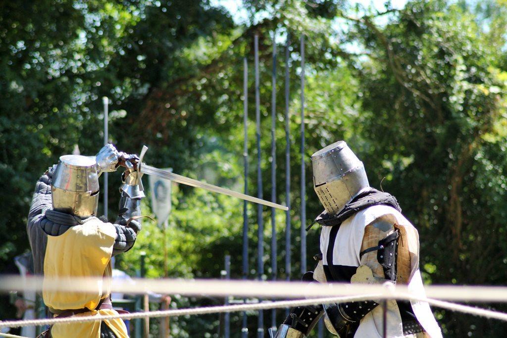 Medievales de commequiers 2016 51