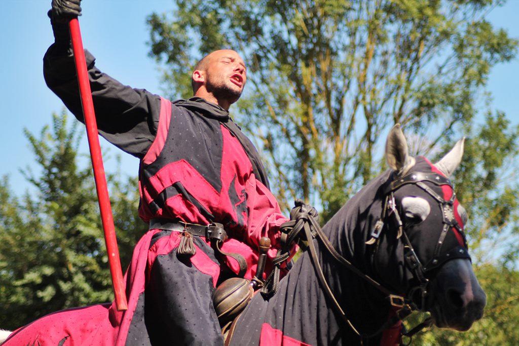Medievales de commequiers 2016 55