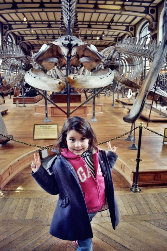 Museum d histoire naturelle paris 11