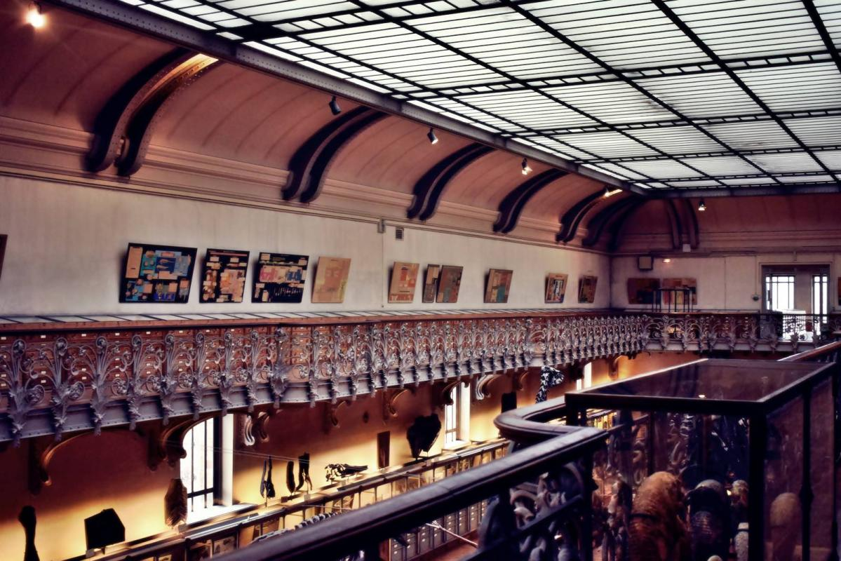 Museum d histoire naturelle paris 21