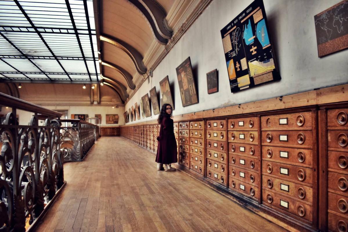 Museum d histoire naturelle paris 24
