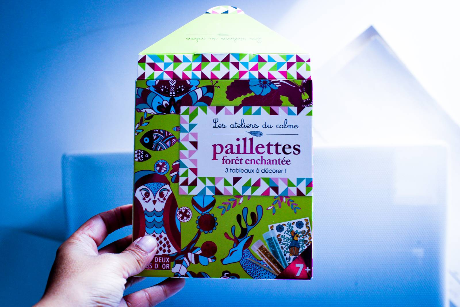 Paillettes forets enchantees deux coqs d or hachette ief homescooling 2