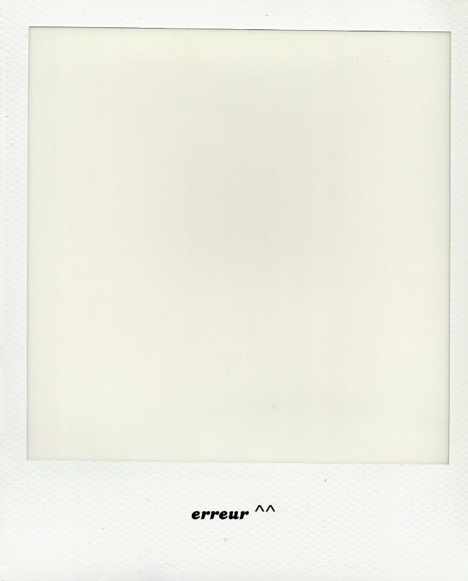 Polaroid 600 3bis