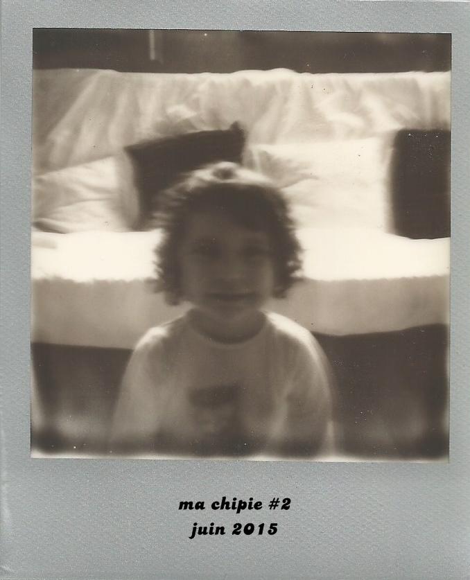 Polaroid 600 5 bis