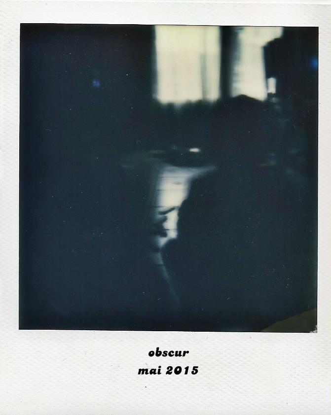 Polaroid 600 6 bis