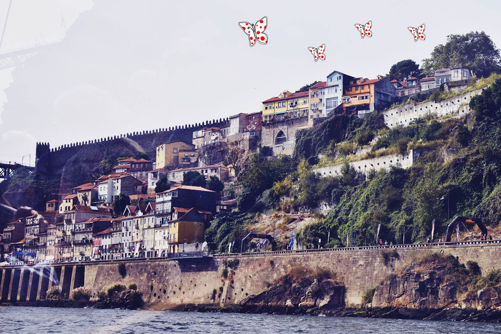 Portugal blog porto voyage ief 5
