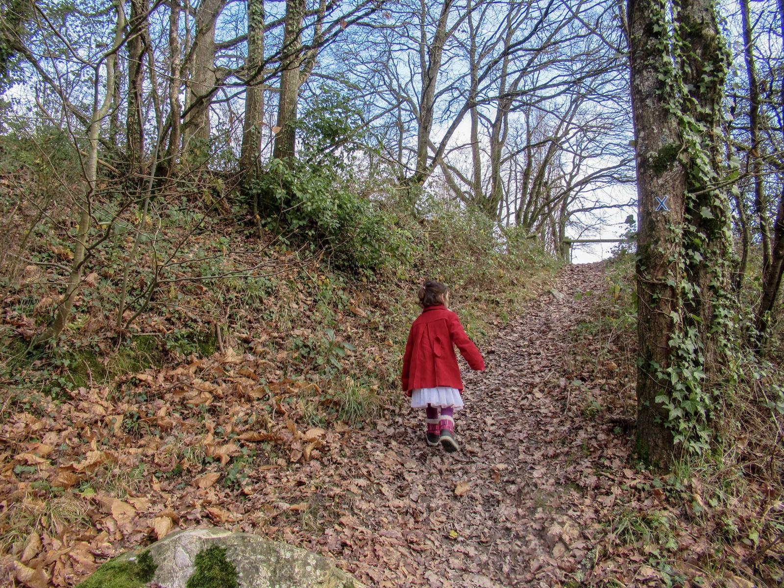 Sentier saint vincent des landesimg 7698