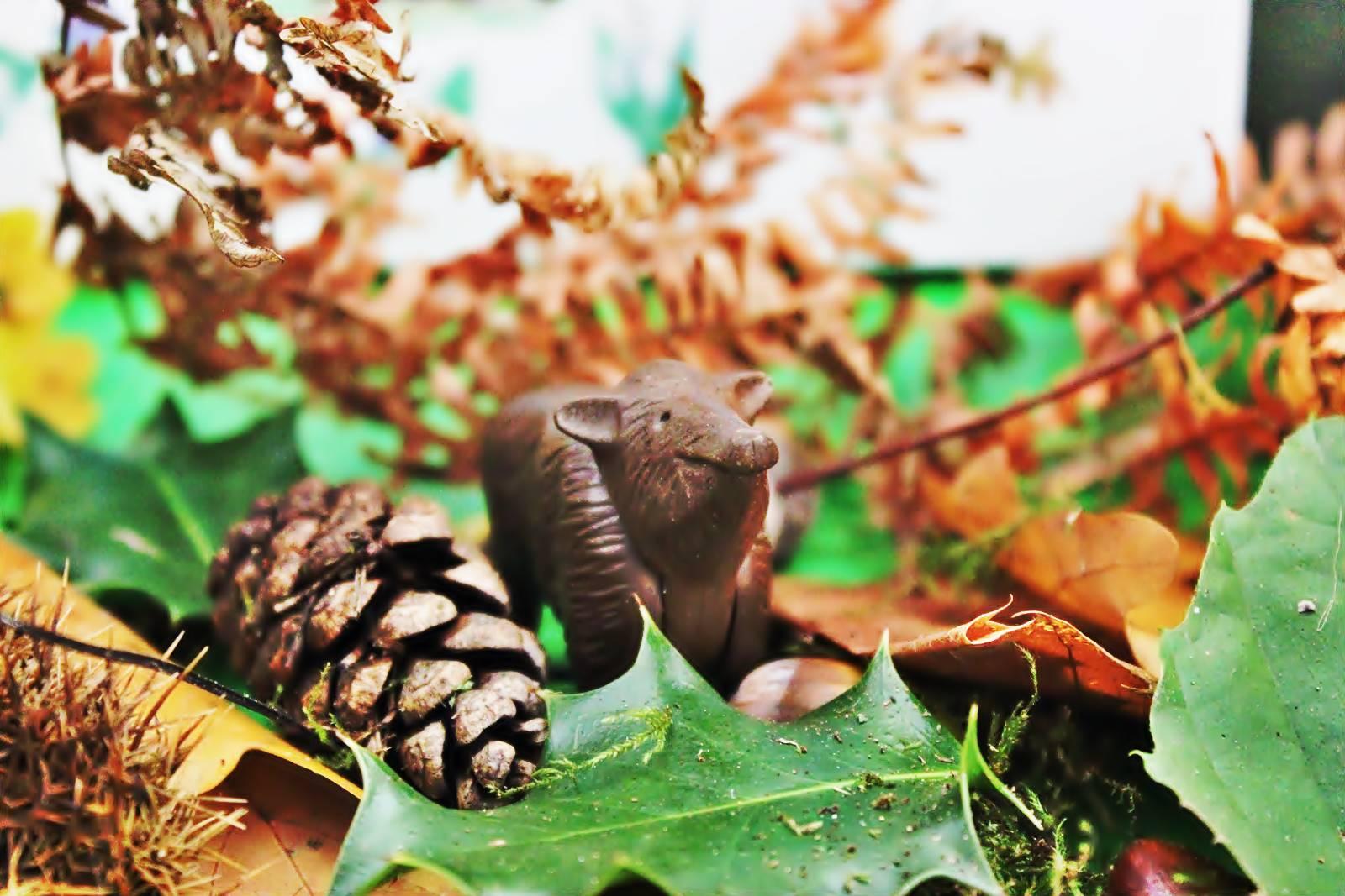 Table des saisons steiner waldorf ief homescooling ecole maison automne 1