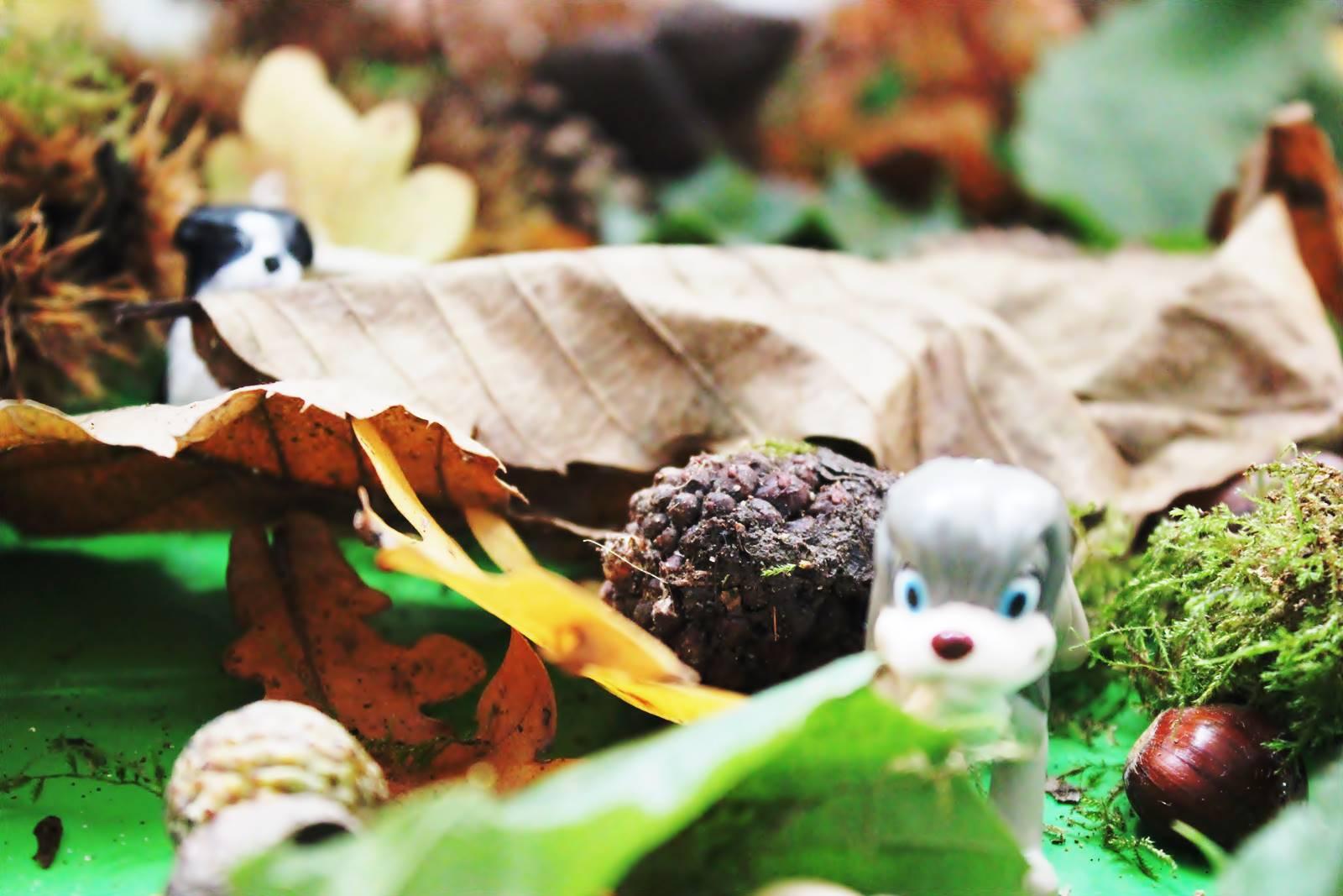 Table des saisons steiner waldorf ief homescooling ecole maison automne 2