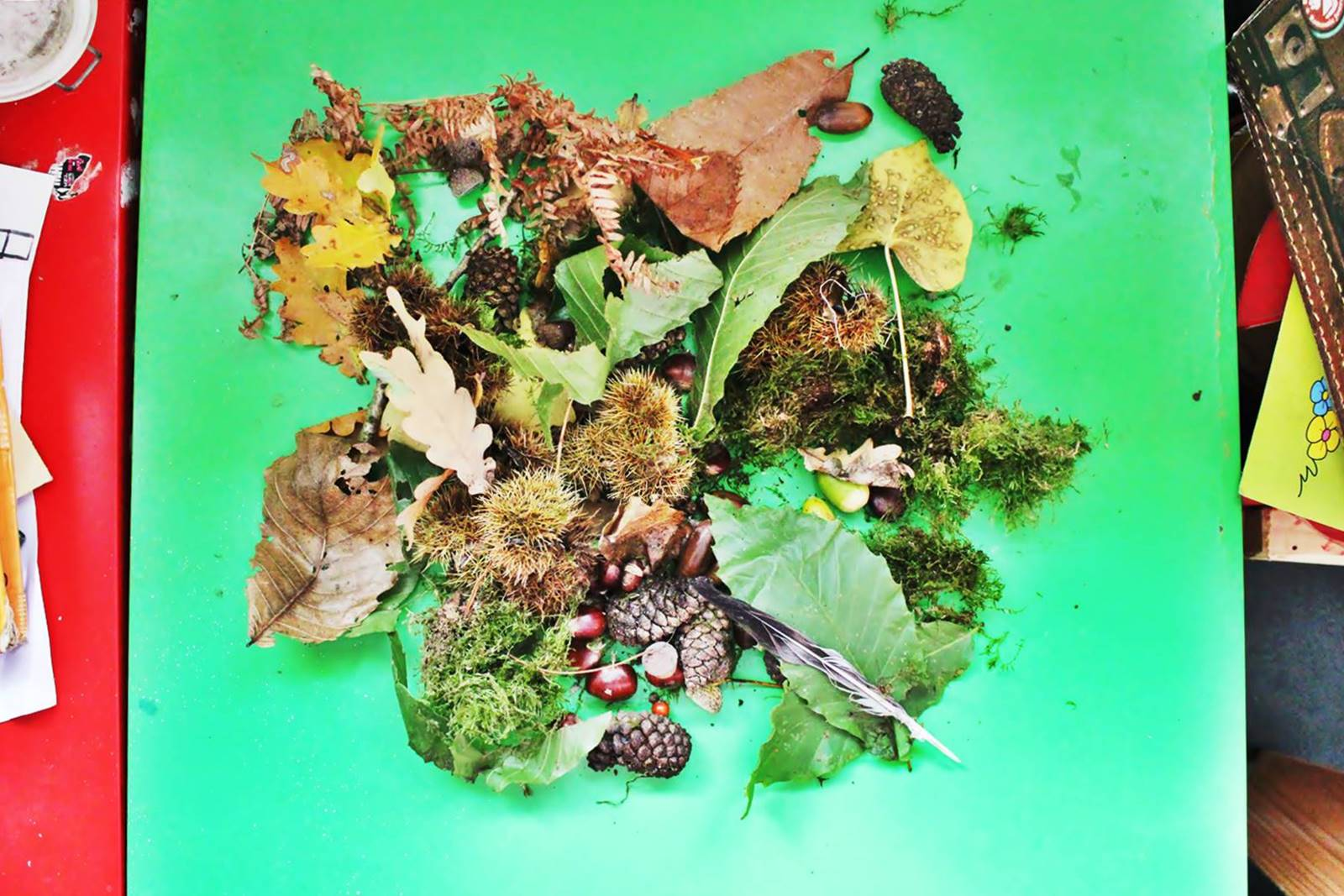 Table des saisons steiner waldorf ief homescooling ecole maison automne 3