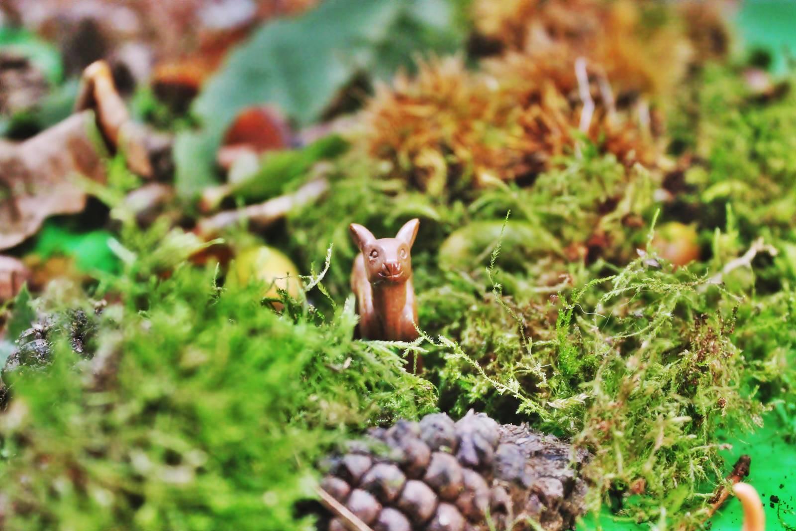 Table des saisons steiner waldorf ief homescooling ecole maison automne