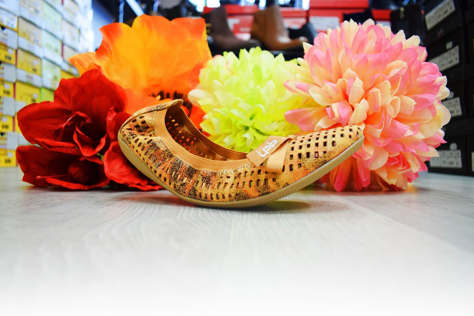 Une histoire de chaussures blain 18 blog