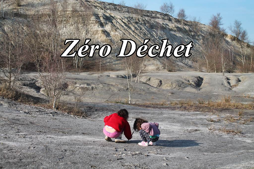 Articles sur le Zéro déchet