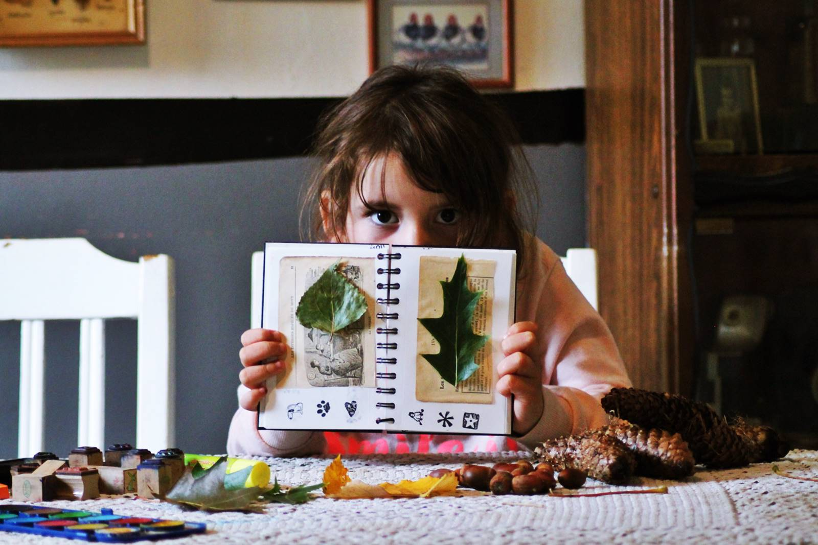 Activites automne enfant ief 13