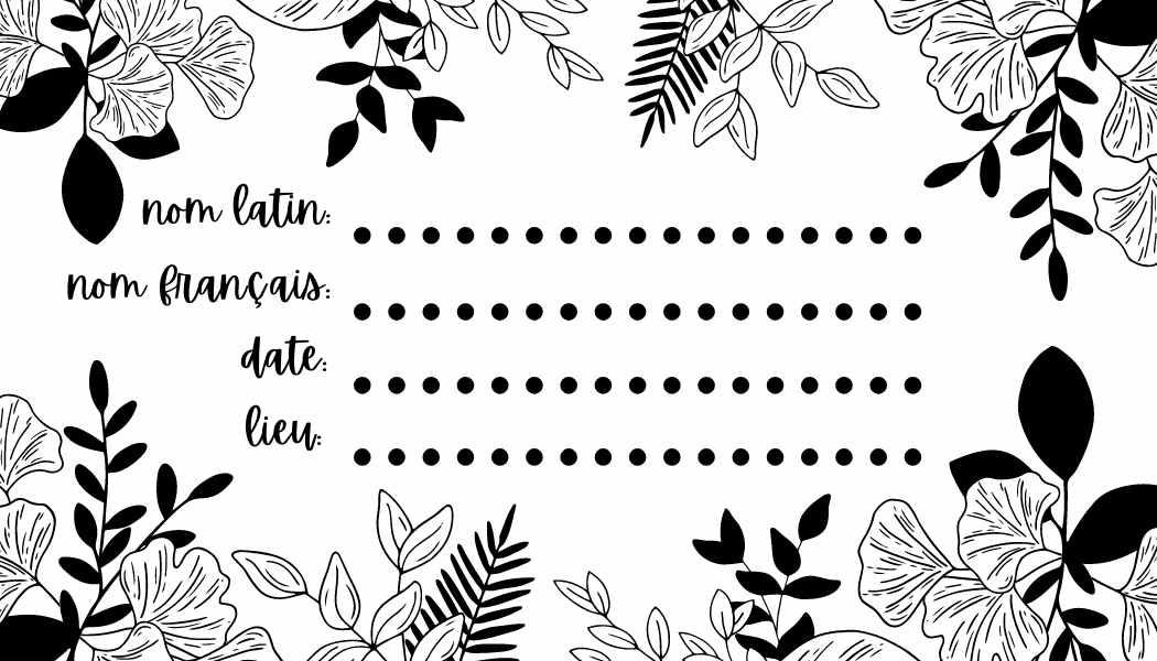 Black and white floral name tag