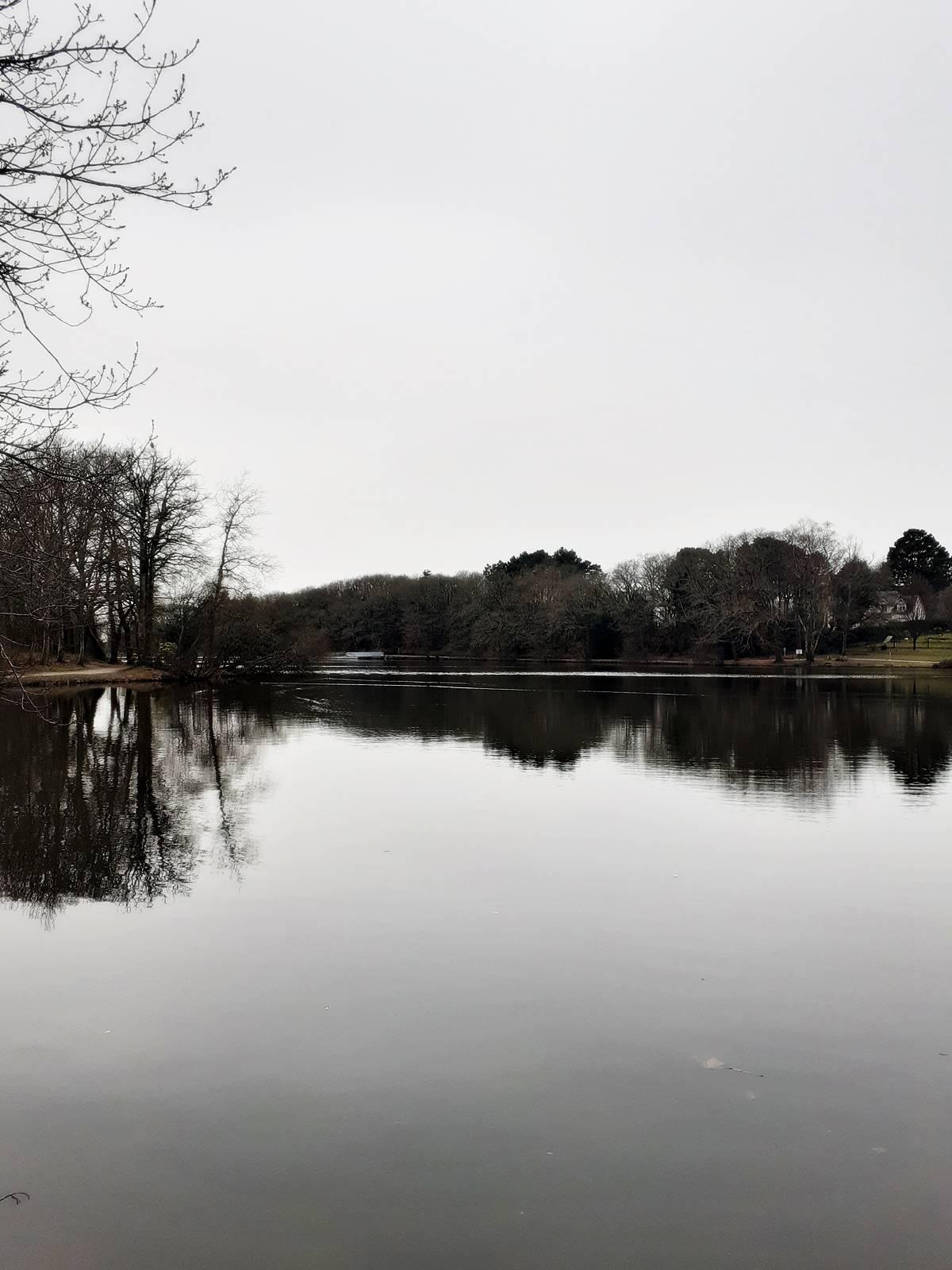 Blog lac de savenay randonnee20210221 143648